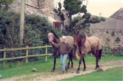 leading young horse out to the field through what is now the courtyard garden