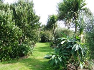 Cornwall garden