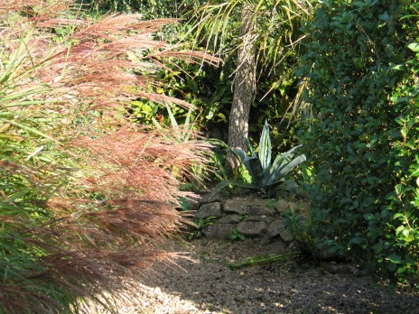 Grael and grasses with an agave tucked in a corner of a path