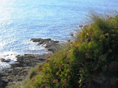 fingers of slate in Mounts Bay and blue seas