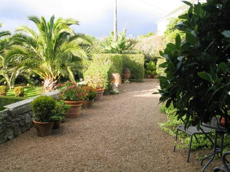 After the rain and the sun breaks through above our gravel terrace