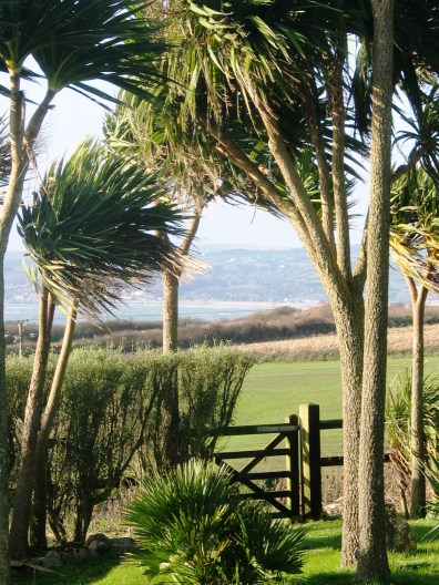 View to Marazion and Penzance from the garden gate