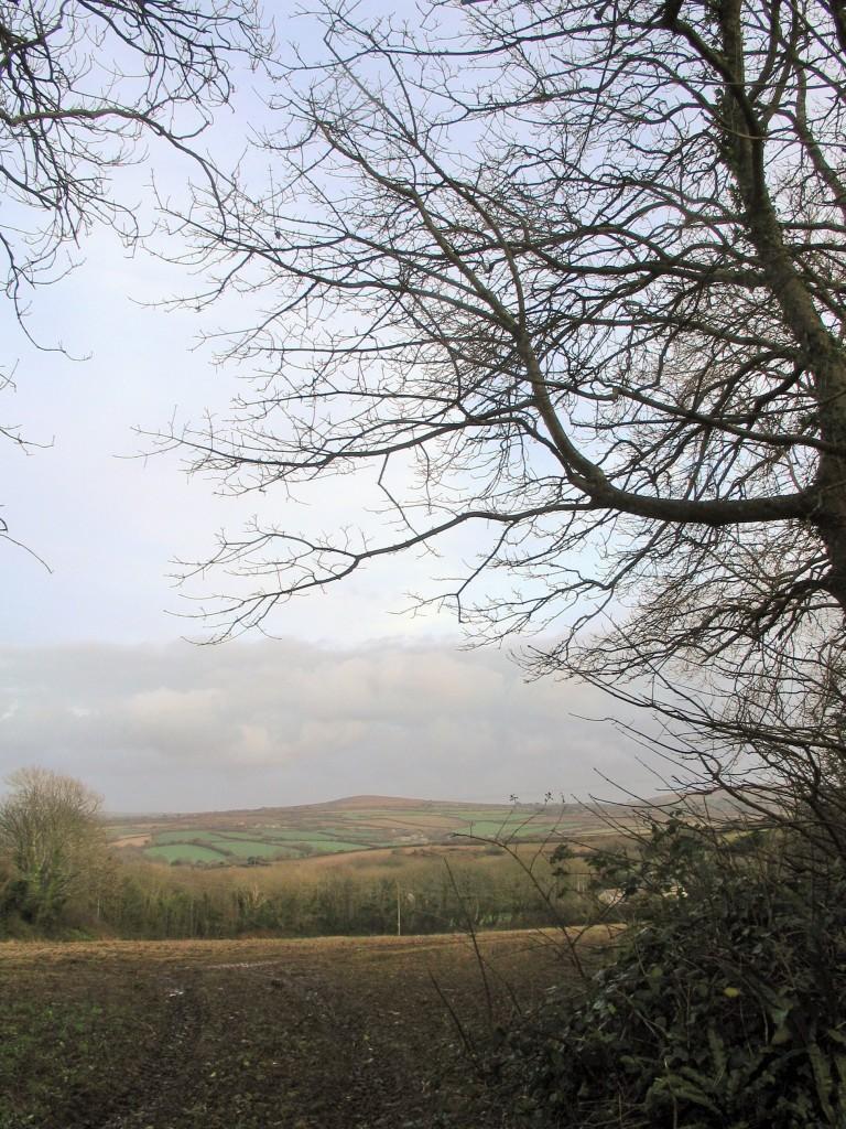 Winter scene in Cornwall