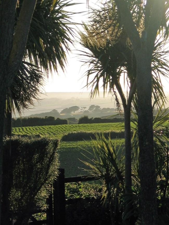 The landscape contours beyond Ednovean Farm's garden beyond the sea