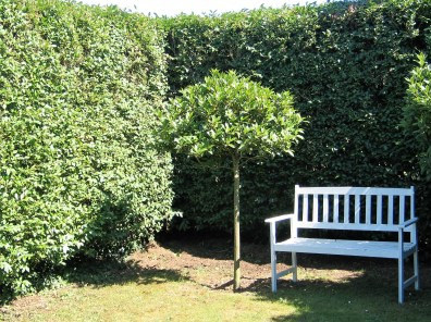 A tranquil garden room in part of the Italian Garden