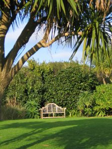 A lutchens style bench framed by a palm tree and evergreen planting