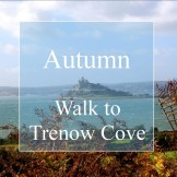 Autumn view on a walk to Trenow Cove