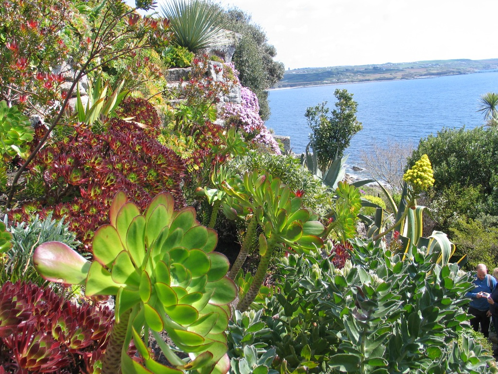 Succulent plants and sea beyond