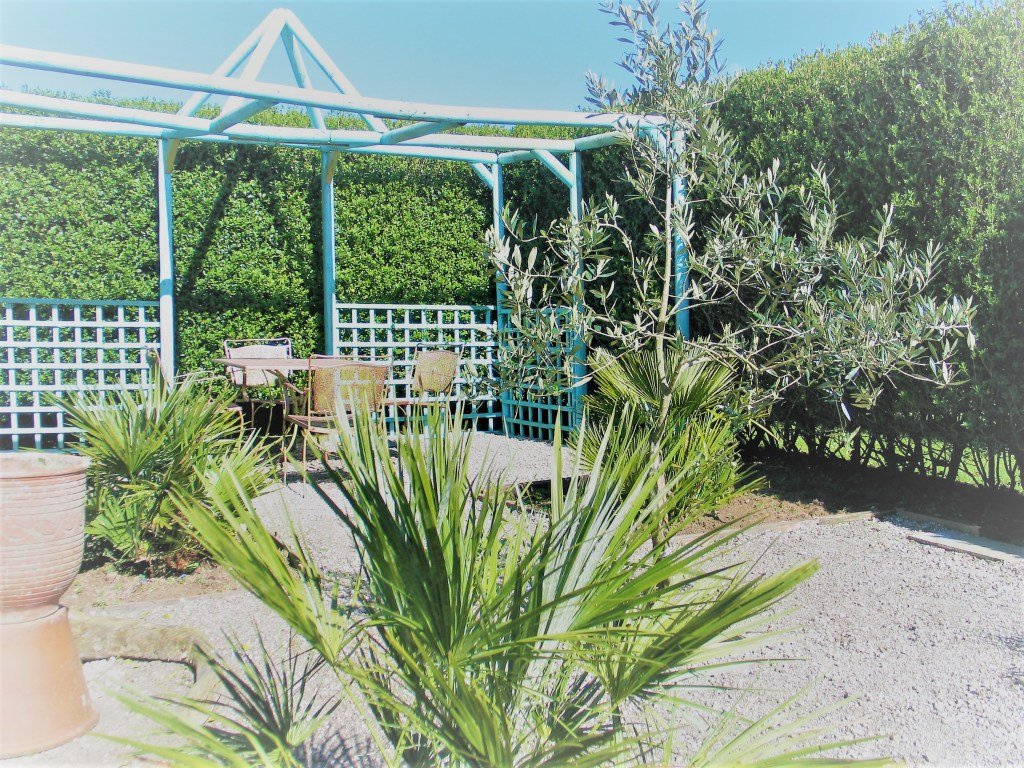recycled materials for a garden project - blue arbour and palms