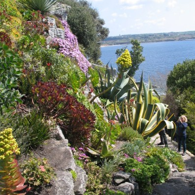 clever planting st michael's mount gardens