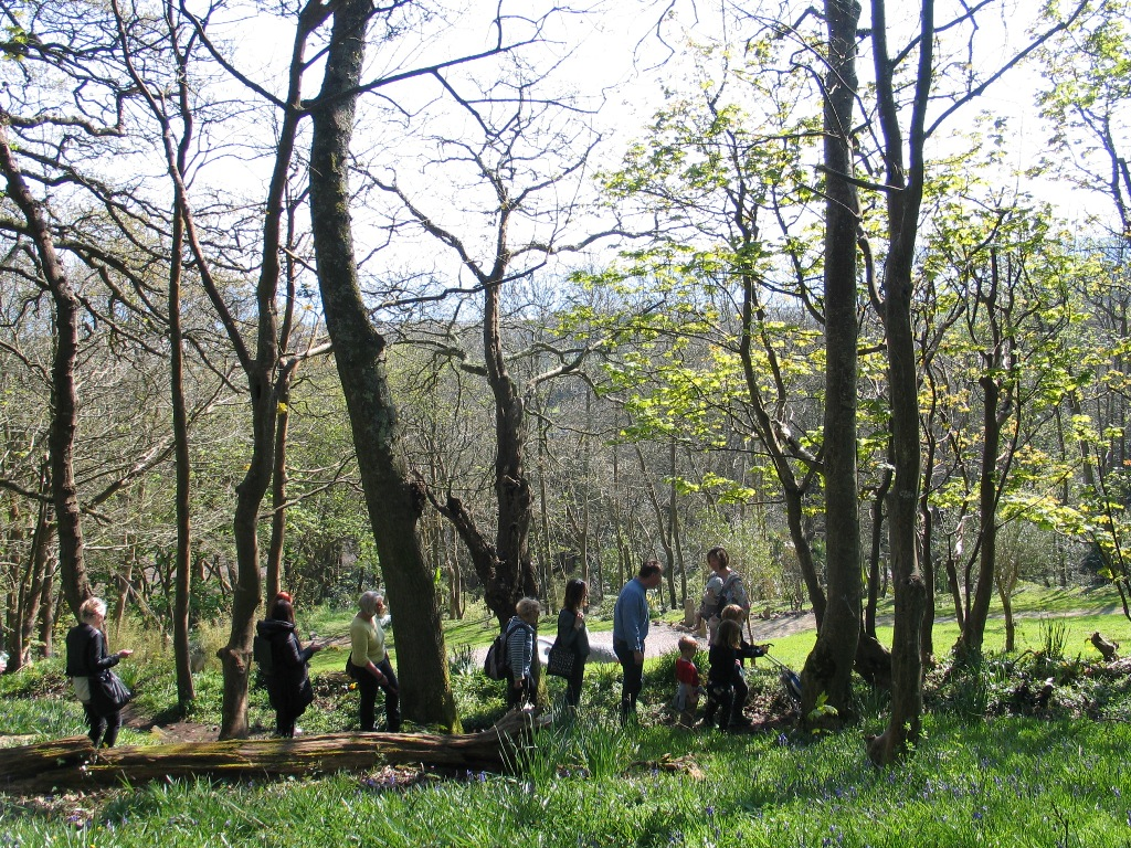walkers in a wooded landscape