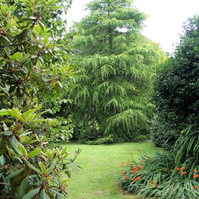 Lush lawns stretch to specimen trees