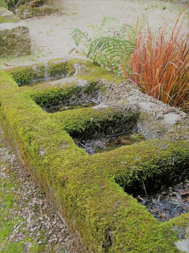 Detail - walled garden