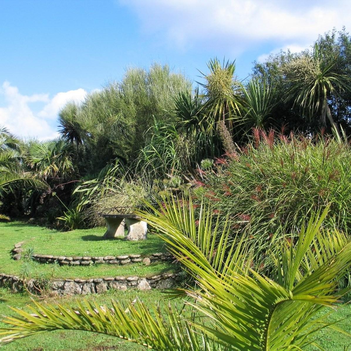 grass border - august garden diary