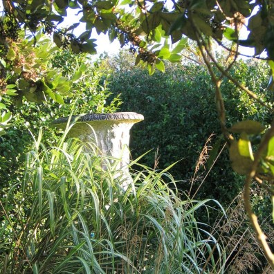 Grasses partly concealing an urn