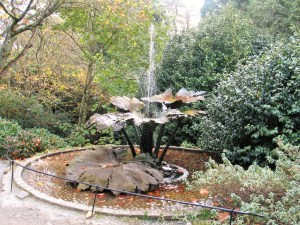 Fountain above a garden