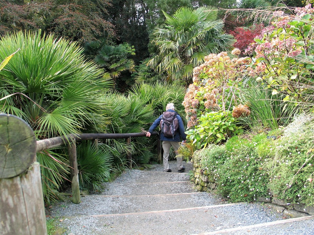 man walking garden steps