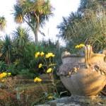 October's autumn garden terrace