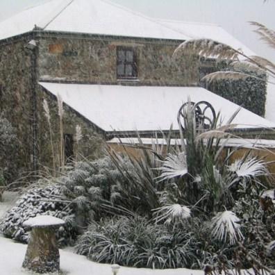 Snow falling on Ednovean farm