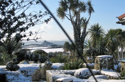 beast from the east cornish garden and view