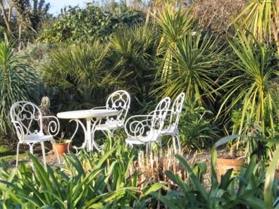garden table set amongst the foliage