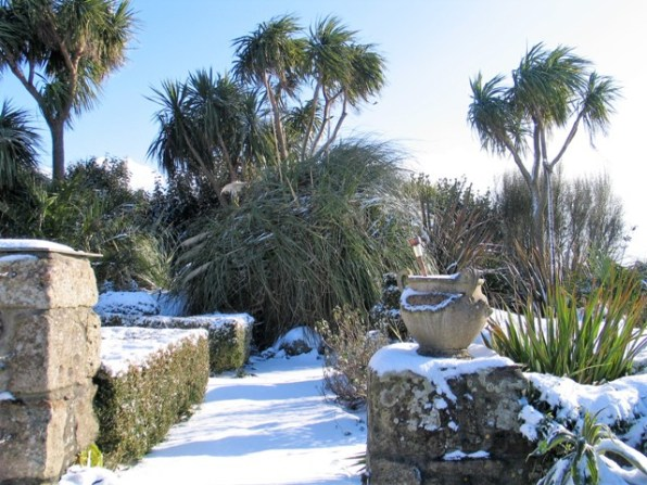 Palm trees frame the exit from the terrace transformed by snow