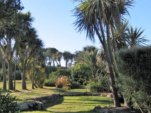 Palm fringed sunken garden - june
