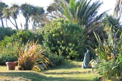 Date Palms tower over a sunken garden