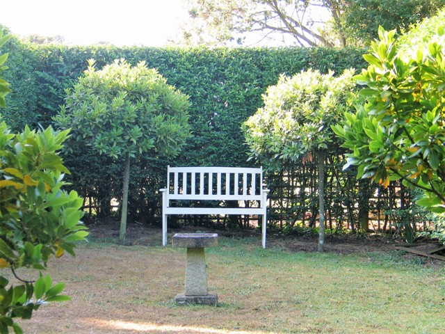 Shaded Bench in formal garden