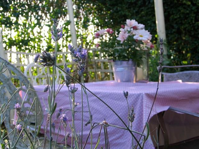 Autumn garden table