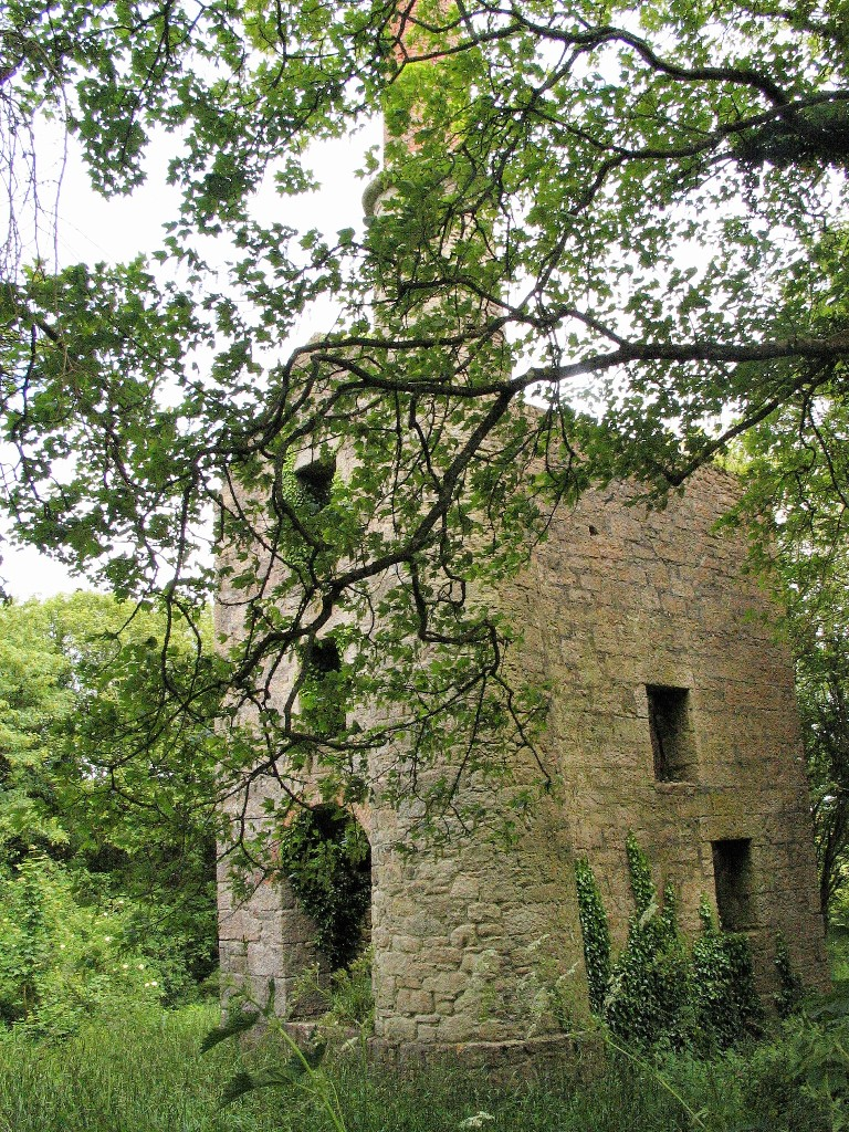 Cornish Engine House hidden in trees