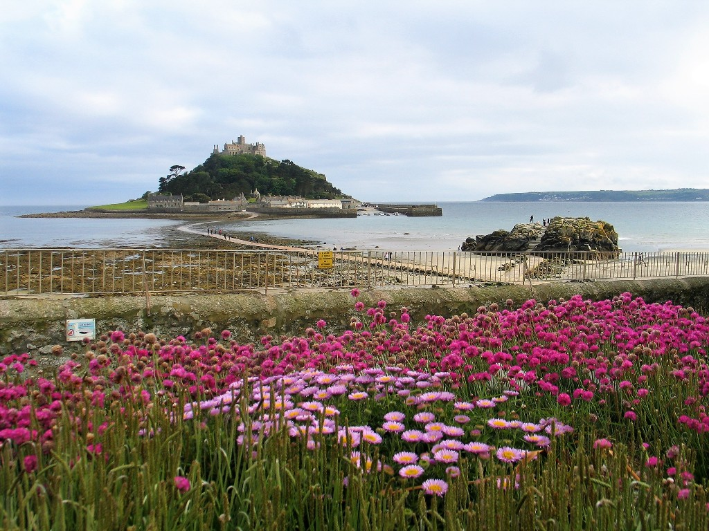 Sea pinks in front of St Michael's Mount in springtime