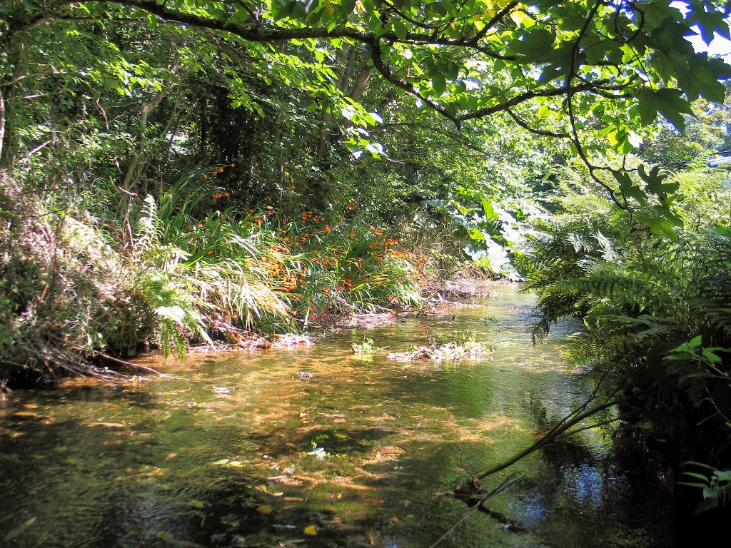 A stream gushes and trickles down the valley to Penberth Cove