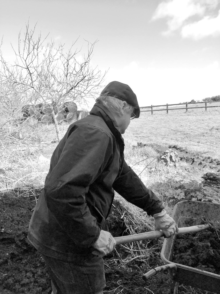 spring jobs in the garden - collecting compost