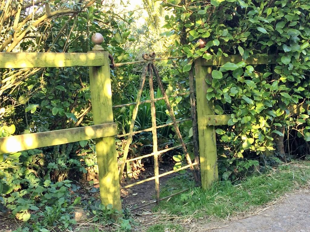 Ednovean Farm is temporarily closed - blacksmith made gate