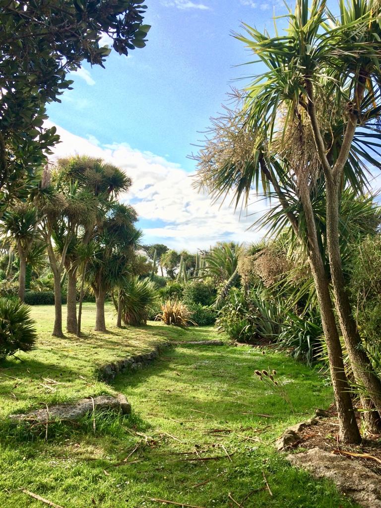 The romantic June garden at Ednovean Farm