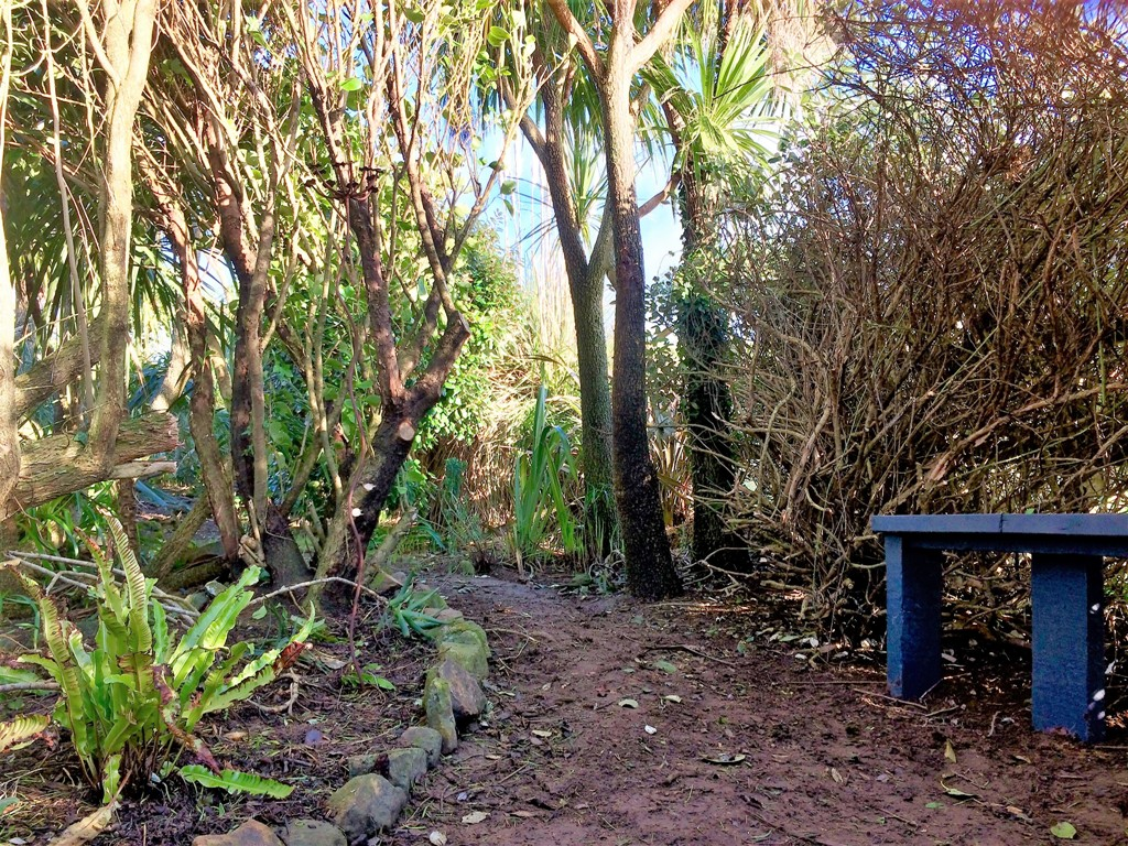 New woodland garden habitat and bench project