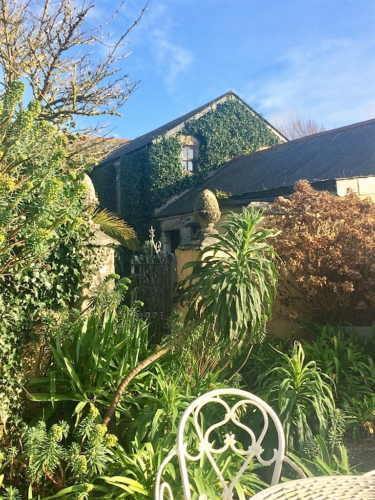 The ivy clad farmhouse is an important shelter for wildlife too
