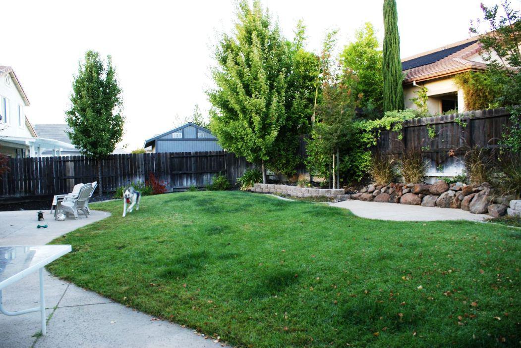 Inexpensive Backyard Landscaping — Edoctor Home Designs on Inexpensive Backyard Landscaping id=44190