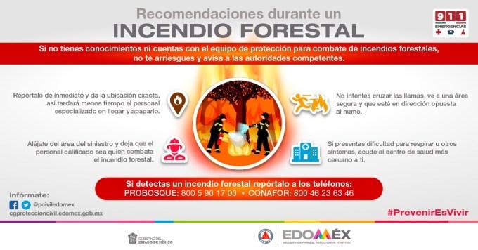 PROTECCIÓN CIVIL DIFUNDE RECOMENDACIONES ANTE INCENDIOS FORESTALES. #GEM REHABILITA UNIDAD DEPORTIVA BICENTENARIO SAN MATEO A... 4