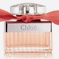 Chloe - Roses de Chloe