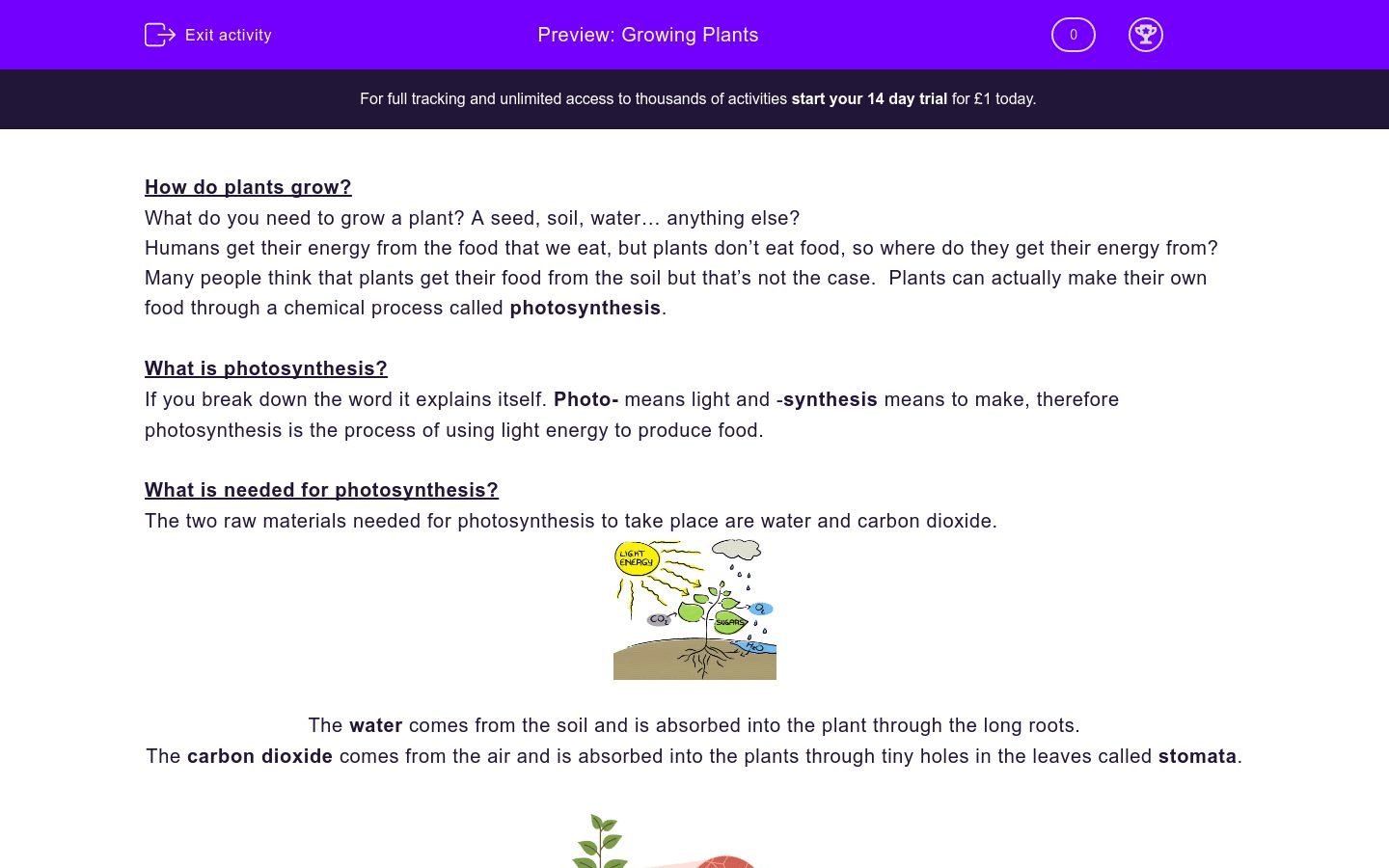 Growing Plants Worksheet