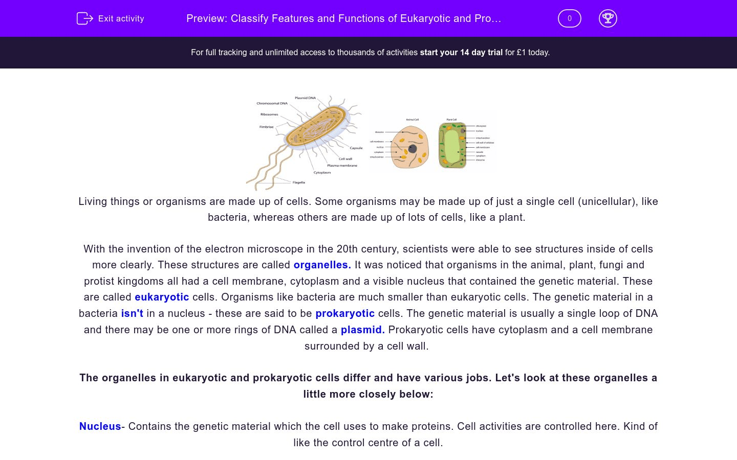Classify Features And Functions Of Eukaryotic And