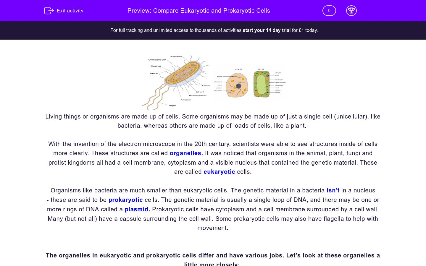 Compare Eukaryotic And Prokaryotic Cells Worksheet
