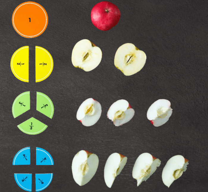 Featured image of the Understanding Fractions course
