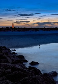Ponce Inlet light, sunset, bird