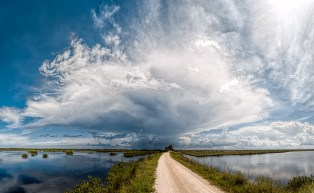 Storm Ahead - Blackpoint Wildlife Drive