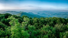 The view from Brasstown Bald