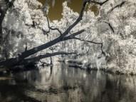 Howell Creek: Winter Springs, Florida