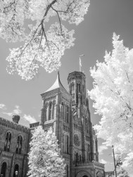 Smithsonian Castle: Washington DC
